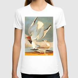 Bonapartian Gull T-shirt