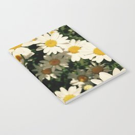 Daisies Notebook