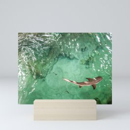 Look at the Shark Mini Art Print