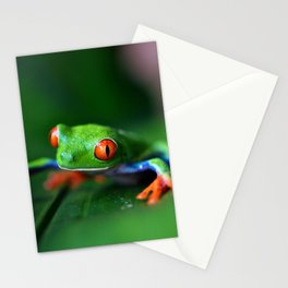 Little Tree Frog (Color) Stationery Cards