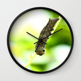 Caterpillar On A Green Plant #decor #society6 Wall Clock