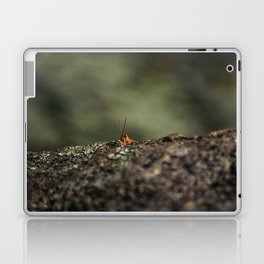 The Cliffhanger Laptop & iPad Skin