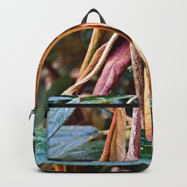 October is Beauty Backpack