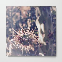 Sharp Focus Metal Print