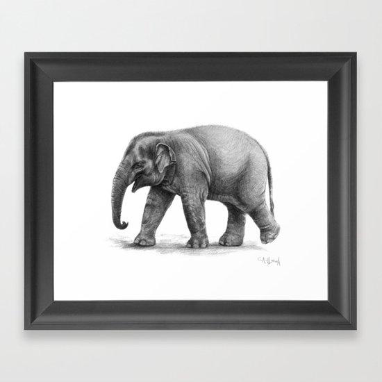 Elephant Baby G092 Framed Art Print