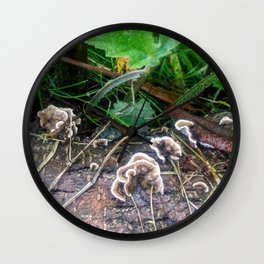 Turkey Tail Fungus Wall Clock