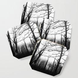 Desolate Coaster