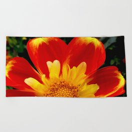 Sunburst Zinnia Beach Towel