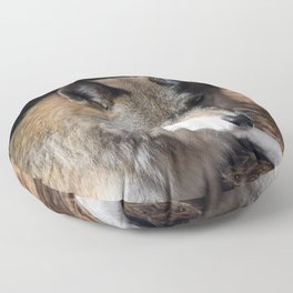 The Eyes of a Wolf Floor Pillow