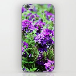 Purple Verbena iPhone Skin