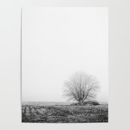 The Lonely Tree Poster
