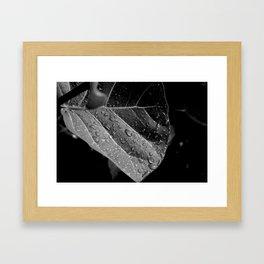Wet Framed Art Print