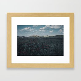 Red flowers in tuscany Framed Art Print