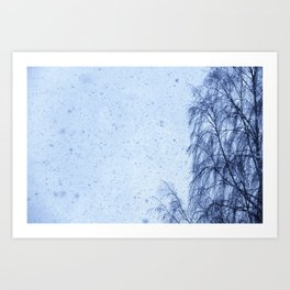 Just snowfall and birch Art Print