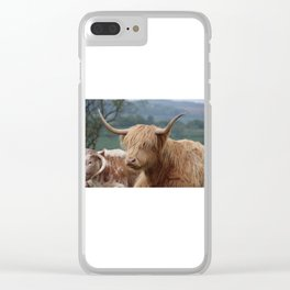 Portrait of Highland Cattle Clear iPhone Case