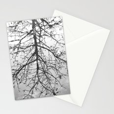 { Reflection } Stationery Cards
