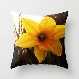 Daffy Throw Pillow