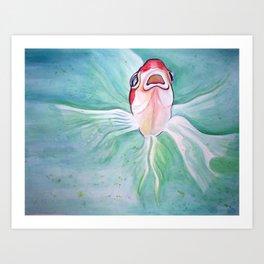 Herb Art Print