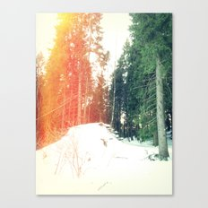 Some kind of charm Canvas Print