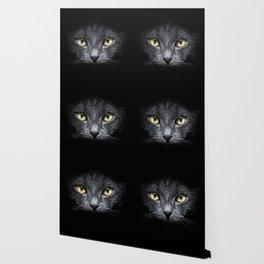 Grace of a black cat Wallpaper