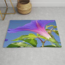 Close Up Of Ipomoea with Leaf and Sky Background Rug
