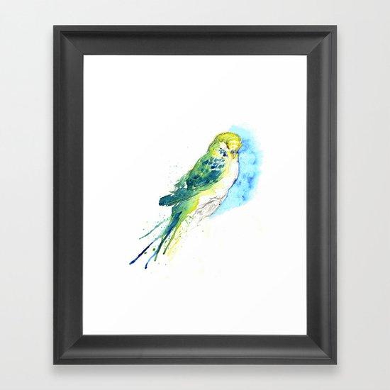 Budgie Series - I - Proud Blue Framed Art Print