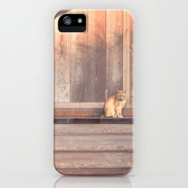 Cat, Kyushu, Temple iPhone Case