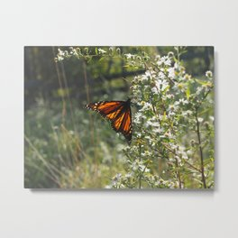 Monarch In My Mother's Field Metal Print