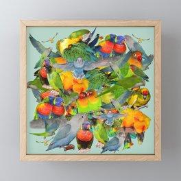 Parrots, parrots, parrots Framed Mini Art Print