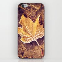 fitzgerald iPhone & iPod Skins featuring Autumn Frost by Elke Meister