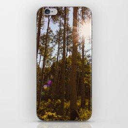 Aspen Grove Photography Print iPhone Skin