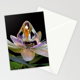 The opening of a passion Stationery Cards