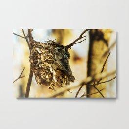 Empty nest syndrome Metal Print