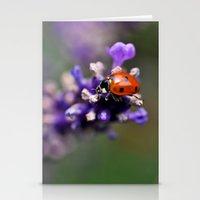 ladybug Stationery Cards featuring Ladybug by Nathalie Photos