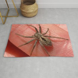 Watercolor People in Nature, AaP, Adult 11, and Wolf Spider, Wild Basin, Colorado, Arachnid Friend Rug