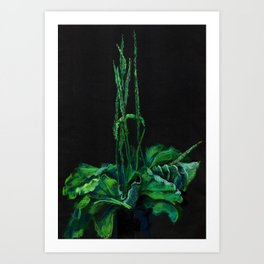 Plantain, green and black Art Print