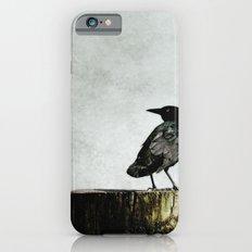 Crow at Sea Slim Case iPhone 6