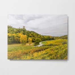 Scenic view of the freshly harvested grape fields in autumn near Buje Metal Print
