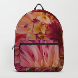 Raspberry Sorbet Backpack
