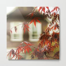 Urban Red Maple Metal Print