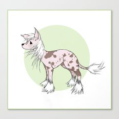 Chinese crested Canvas Print