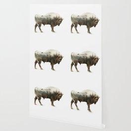 Bison Wallpaper