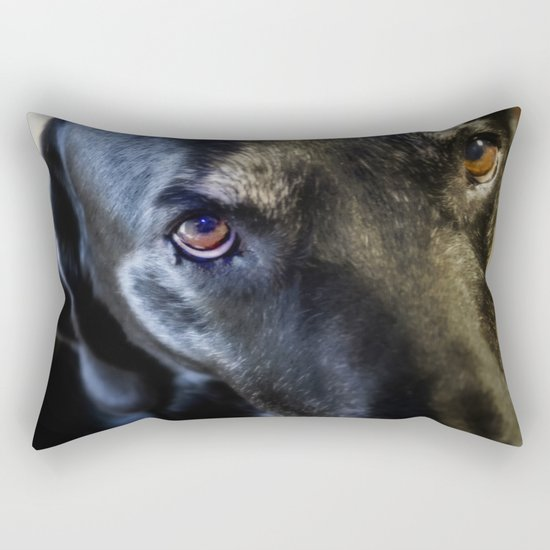 I Have Eyes For You Rectangular Pillow