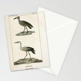 077 Ombrette (Fr) Bec ouvert (Fr)9 Stationery Cards