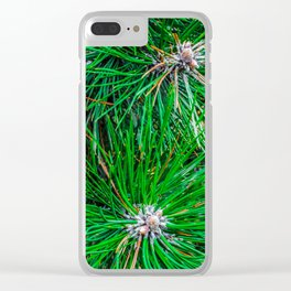 Pine tree needles Clear iPhone Case