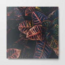 Dark Leaves - Nature Photography Metal Print
