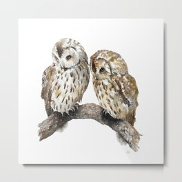 Two owls Metal Print