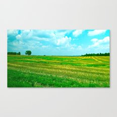 Kentucky Skies  Canvas Print