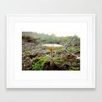 mushroom Framed Art Prints featuring Mushroom... by belkat