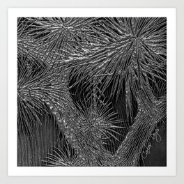 Joshua Tree Plata by CREYES Art Print